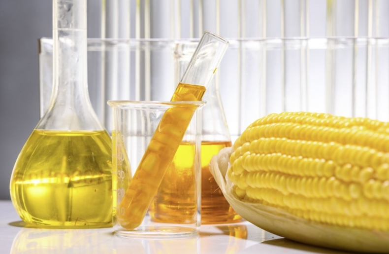 NexantECA HVO in Latin America: Hydrogenated Vegetable Oil and High Value Opportunity